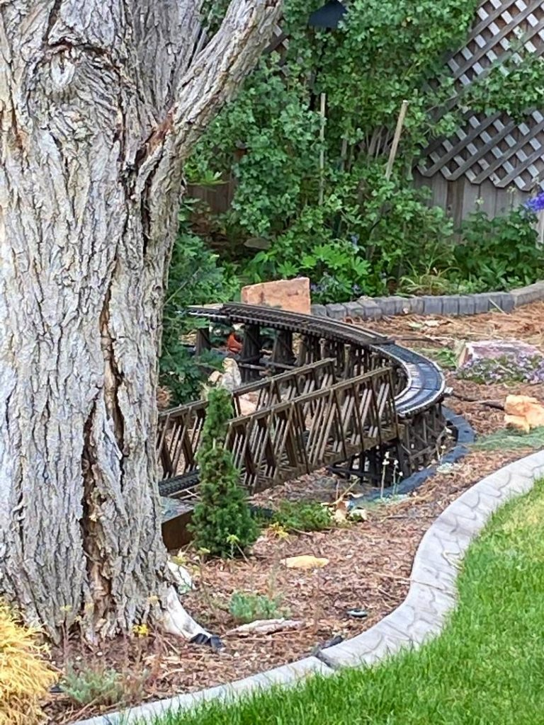 Backyard with model train set running behind a large tree