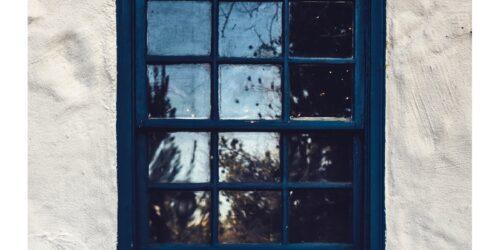 Window-tim-mossholder-crop@2x
