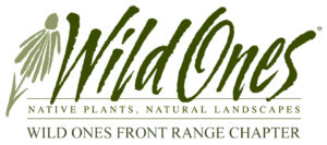 Wild Ones Logo